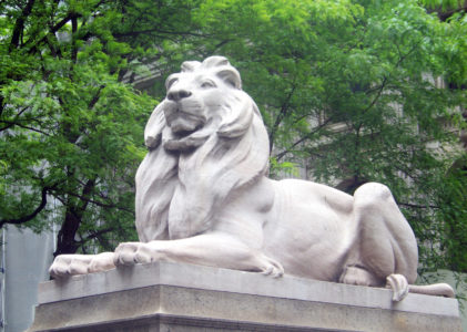 The Top 5 Benefits of Having an NYPL Card