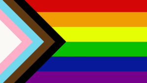 A rainbow flag with black, brown, light blue, pink, and white stripes added.