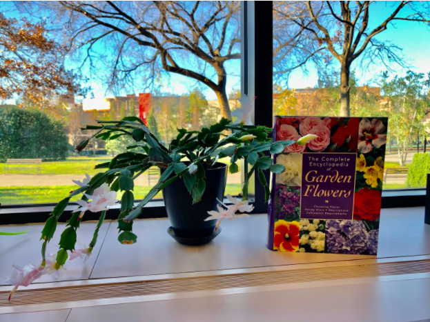 Plants of the Library, Volume 4