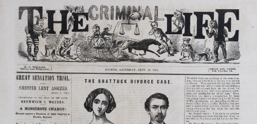 """New Database: """"Flash Press"""" Newspapers of the 19th Century"""