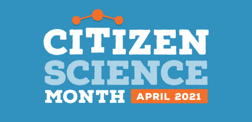 Power in Numbers: Getting Engaged with Citizen Science